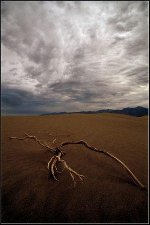 Morten Tolstrup - Death Valley