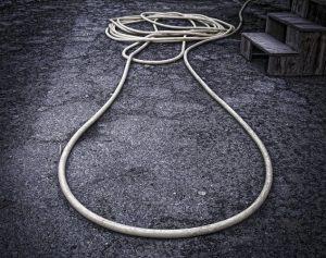 Niels Jørgen ValentinGul slange