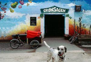 Groensagen---Bjarne-Kleis-Hansen---Naestved-Fotoklub