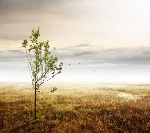 Unseen-Destination---Martin-Moeller---Dansk-Nikon-Klub