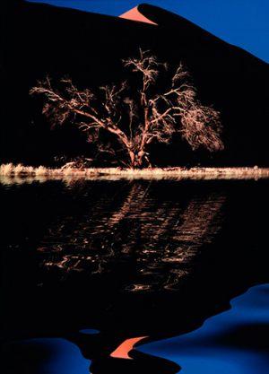 "Erik Jørgensen Negativ Roskilde ""Morning Reflection 01"" Diplom"