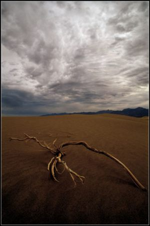 Morten Tolstrup - Death Valley
